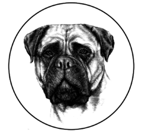 Cape Bullmastiff Club